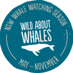 wildaboutwhales-logo-217x215